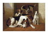Foxhounds And A Terrier Premium Giclee Print by E.a.s. Douglas