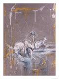 Swans I Giclee Print by Marta Gottfried