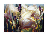 Iris Garden Giclee Print by Elizabeth Horning