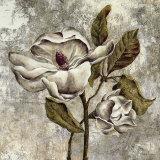 Silver Magnolia II Posters by Laurel Lehman