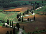 Tuscany Winding Road Prints by Roger Antrobus