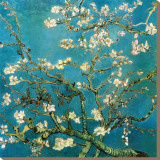 Almond Branches in Bloom, 1890 Stretched Canvas Print by Vincent van Gogh