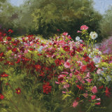 Cosmos Garden II Art by Shirley Novak