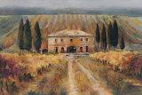 Toscan Vigna Posters par Marilyn Hageman
