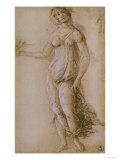 Study of Pallas, Gabinetto Dei Disegni E Delle Stampe, Uffizi Gallery, Florence Premium Giclee Print by Sandro Botticelli