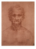 Head of an Old Man, Drawing, Royal Library, Windsor Giclee Print by  Leonardo da Vinci