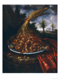 Still Life with Dates, Palatine Gallery, Florence Lmina gicle por Bartolomeo Bimbi