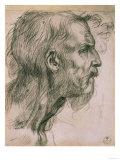 Drawing with Male Profile, in the Uffizi Gallery, in the Gabinetto Dei Disegni E Delle Stampea Giclee Print by  Andrea del Sarto