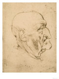 Profile of a Bald Man, Pen Drawing on White Yellowed Paper, Biblioteca Ambrosiana, Milan Giclee Print by  Leonardo da Vinci