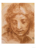 Head of a Young Woman, Drawing by Andrea Del Sarto, Uffizi Gallery, Florence Giclée-tryk af Andrea del Sarto