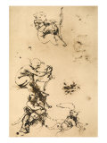 Some Studies for the Madonna with the Cat Pen Drawing on White Paper Giclee Print by Leonardo da Vinci