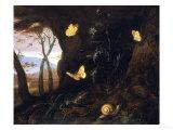 Underbrush with Reptiles and Butterflies, Uffizi Gallery, Florence Giclée-trykk av Otto Marseus Van Schrieck