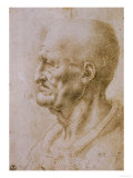 Head of a Man Seen in Profile Giclee Print by  Leonardo da Vinci