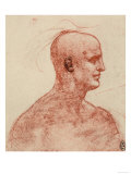 Profile of a Male Portrait Giclee Print by  Leonardo da Vinci