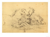Horses in Different Positions on the Ground Giclee Print by  Stefano Della Bella