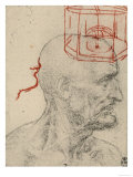 Study of a Male Profile, Black and Sanguine Pencil Drawing on Gray Paper, Royal Library, Windsor Giclee Print by  Leonardo da Vinci
