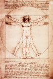 De mens van Vitruvius Posters van  Leonardo da Vinci
