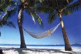 Paradise In The Tropics Plakaty