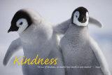 Vänlighet Posters