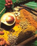 Spices Art by Bruno Morandi