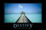 Osud – Destiny (citát vangličtině) Fotografie