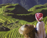 Zhuang Girl with Rice Terraces Posters by Keren Su