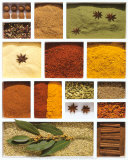 Spices Posters by Camille Soulayrol