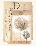 Dahlia Print by  Gouny