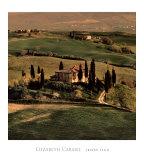 Tuscan Villa Posters by Elizabeth Carmel