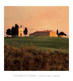 Evening Light, Tuscany Prints by Elizabeth Carmel
