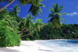 Ilha de Mahé, Seychelles Pôsters por José Fuste Raga