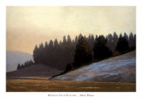 Morning Near Potlatch Prints by Marc Bohne