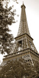 La Tour Eiffel I Prints by Boyce Watt