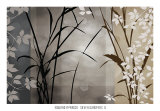 Silver Whispers II Prints by Edward Aparicio
