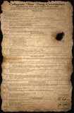 Beer Pong Constitution Photo
