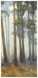 Silver Trees II Póster por Jill Barton