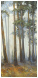Silver Trees II Poster by Jill Barton