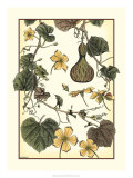 Arts and Crafts Gourd Poster by M.P. Verneuil