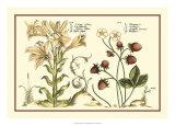 Garden Botanica I Giclee Print