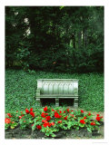 Neo-Gothic Bench in the Park of Babelsberg Palace, Potsdam Giclee Print by Karl Friedrich Schinkel