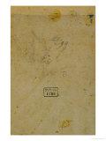 Portrait of a Man Giclee Print by Lorenzo di Credi