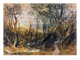 Woodland Scene, circa 1810, Watercolour on Paper Giclee Print by William Turner