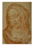 Portrait of a Woman with Veil Giclee Print by Lorenzo di Credi