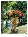 Flower Vase in the Courtyard of Charlottenhof Palace Giclee Print by Karl Friedrich Schinkel