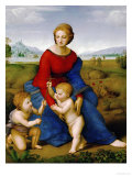 Madonna on the Meadow, 1505 or 1506 ジクレープリント : ラファエロ