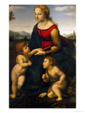 Madonna and Child with St. John the Baptist, 1507 Reproduction proc&#233;d&#233; gicl&#233;e par Raphael 