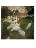 The Turkeys, 1877 Reproduction procédé giclée par Claude Monet