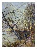 Le Bois Des Roches, Veneux-Nadon, 1880 Impression giclée par Alfred Sisley