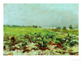 View of the Vineyards, 1880 Giclee Print by Henri de Toulouse-Lautrec