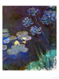 Waterlilies and Agapantes, 1914-1917 Giclee Print by Claude Monet